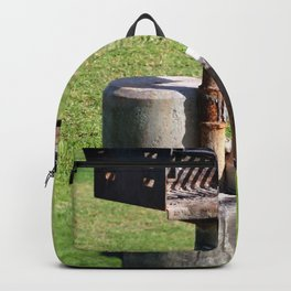 BBQ In Park Backpack