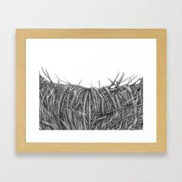 birdnest Framed Art Print