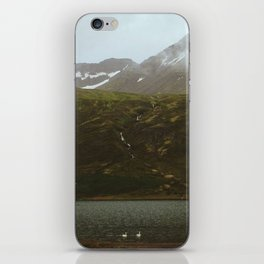 Swans in the Fjord iPhone Skin