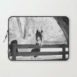Gypsy Vanner Beauty Laptop Sleeve