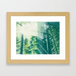 New Day Framed Art Print