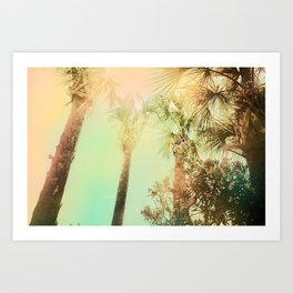 Afternoon at the Cape Art Print