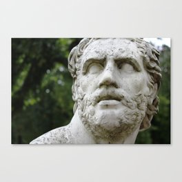 Petrified Canvas Print
