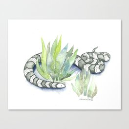 Snake in Plants Canvas Print