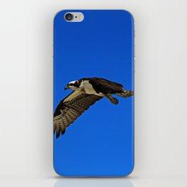 Osprey in Flight II iPhone Skin