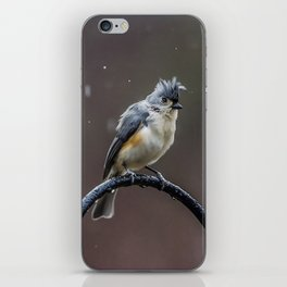 Tufted Titmouse shaking off the rain iPhone Skin