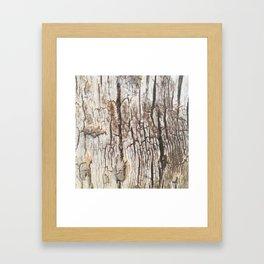 Beyond Cracks Framed Art Print