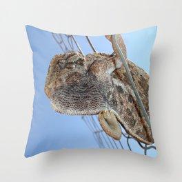 Chameleon Understudy Throw Pillow