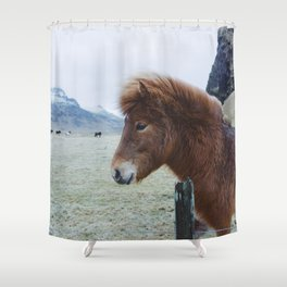 Brown Horse in Iceland Shower Curtain