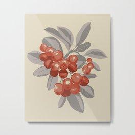 Bunch of ripe red aronia berries Metal Print