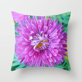 Aster with Crab Spider Throw Pillow