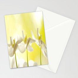 Three Ballerinas Stationery Cards
