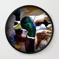 ducks Wall Clocks featuring ducks by  Agostino Lo Coco