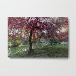 Japanese Maple Sunburst Metal Print