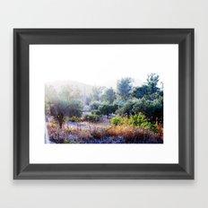 The Bush Framed Art Print