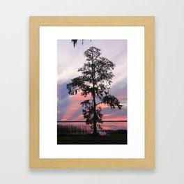 Gods Cypress Framed Art Print