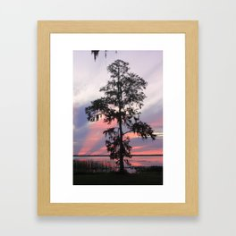 Gods Cypress Framed Art Print