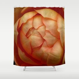 Peach Rose 62 Shower Curtain
