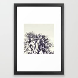 river trees Framed Art Print