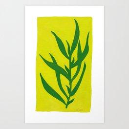 Leaf Shadow Art Print