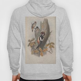 070 Great Spotted Woodpecker picus major4 Hoody