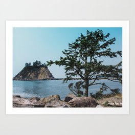 Pacific Northwest Coast Island and Tree Art Print
