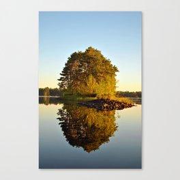 Morning Glass Canvas Print