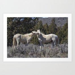 Wild Horses with Playful Spirits No 2 Art Print