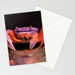 Colorful crab | Harlekinkrabbe Stationery Cards