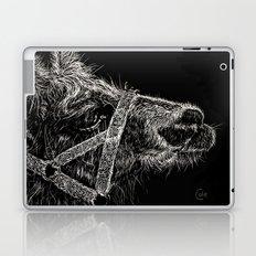 High Park Zoo Llama Laptop & iPad Skin
