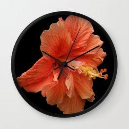 Double Orange Hibiscus DPG160419 Wall Clock