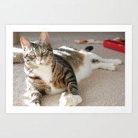 Flour Cat Art Print
