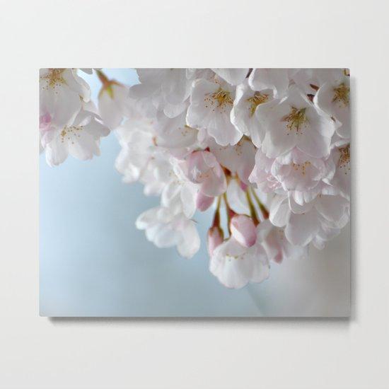 Spring Blossoms :) Metal Print