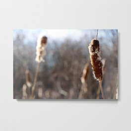 Focus on the present Metal Print