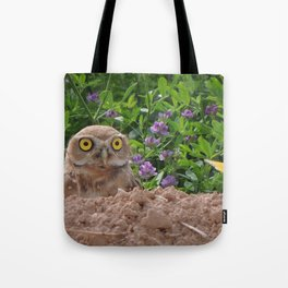 Owl and Butterfly Tote Bag