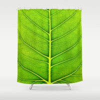 leaf Shower Curtains featuring Leaf by Patterns and Textures