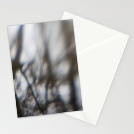 Pecan Trees Stationery Cards
