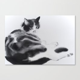 Fulopke our cat is resting Canvas Print