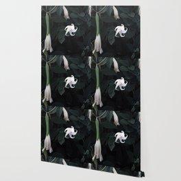 MOONFLOWER Wallpaper