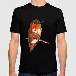 Allen's Hummingbird T-shirt