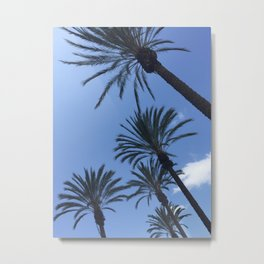 Palm tree sky Metal Print
