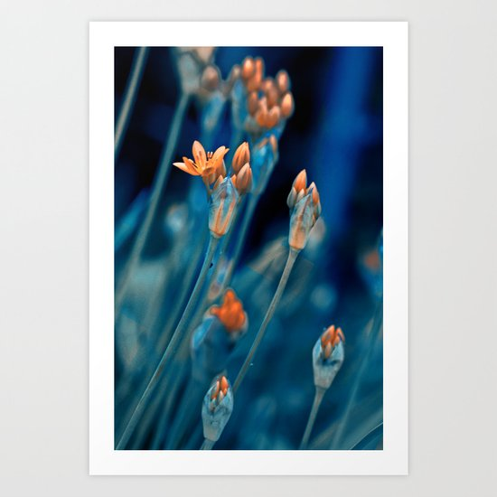 Floral abstract(7). Art Print