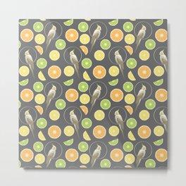 Citrus cockatiel Metal Print