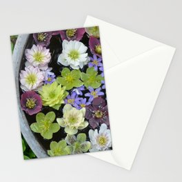 Colorful hellebore flowers Stationery Cards