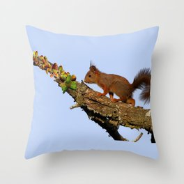 Petit écureuil a trouvé des noisettes.... Throw Pillow