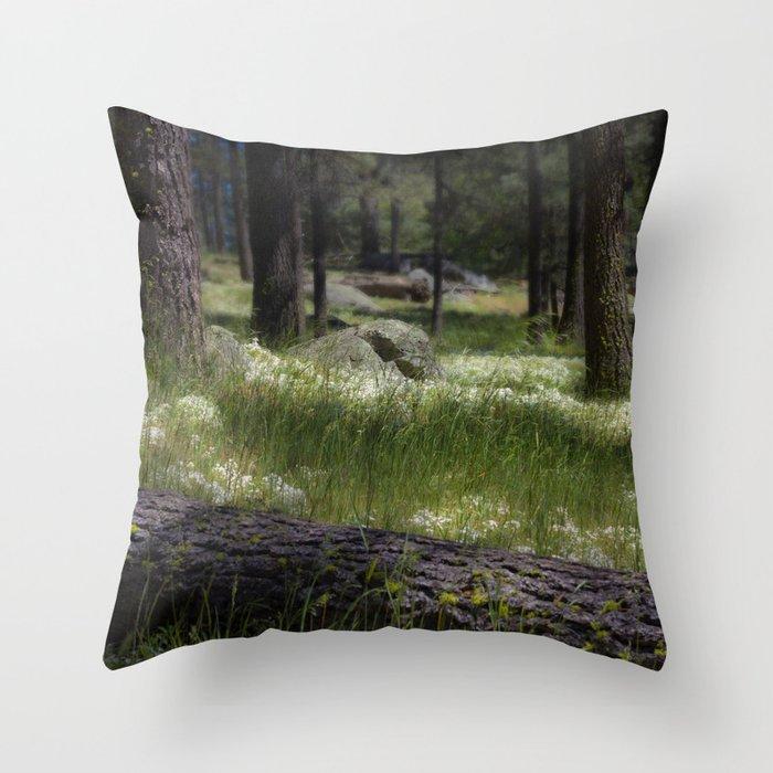 Mt. Laguna San Diego Ca Throw Pillow