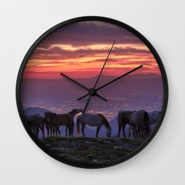 Wild horses at the mountains. Sierra Nevada National park just after sunset Wall Clock