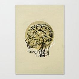 Penrose Anatomy Canvas Print
