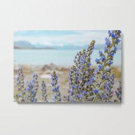 Lake Tekapo Flower Delight Metal Print