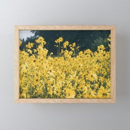 Daisies For Days Framed Mini Art Print